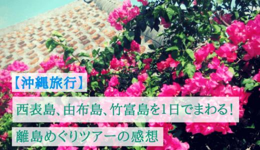 西表島、由布島、竹富島を1日でまわる!離島めぐりツアー
