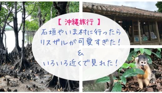 【沖縄旅行】石垣やいま村に行ったらリスザルが可愛すぎた!&いろいろ近くで見れた!