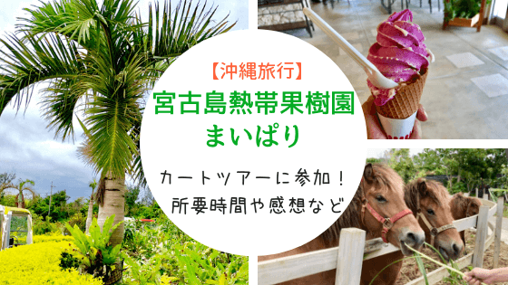 宮古島熱帯果樹園まいぱりへ行ってきた。