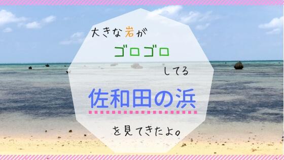 佐和田の浜に行ってきた。