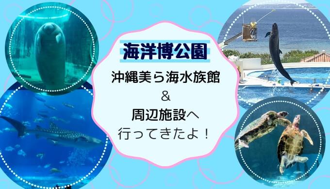 沖縄美ら海水族館&周辺施設へ行ってきたよ!