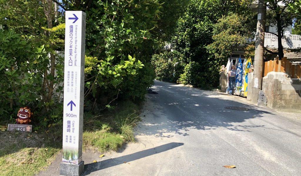 備瀬のフクギ並木入口