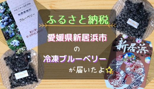 【ふるさと納税】愛媛県新居浜市『冷凍ブルーベリー800g』を紹介!