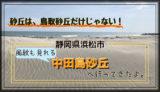 静岡県浜松市の中田島砂丘へ行ってきた。