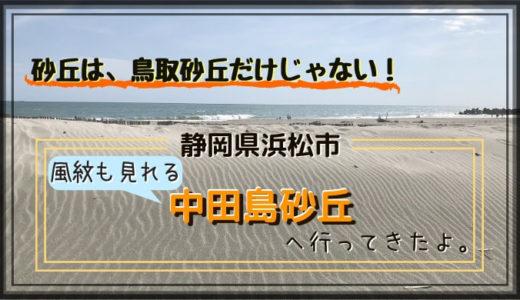 静岡にも砂丘がある!浜松観光で中田島砂丘を満喫!おすすめの服装や感想など