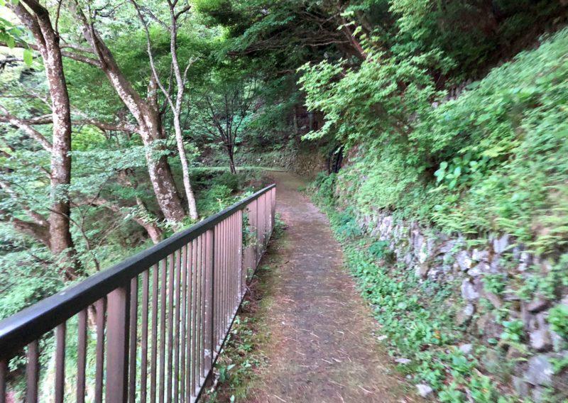 東平ゾーンの道