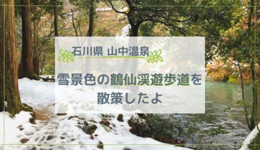 山中温泉 雪景色の鶴仙渓遊歩道(こおろぎ橋~あやとりはし)を散策したよ