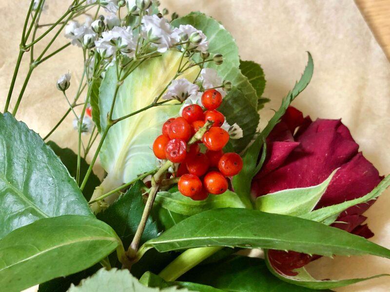 お花の定期便  bloomee / ブルーミー(旧Bloomee LIFE / ブルーミーライフ)で開封時に状態が悪かったお花